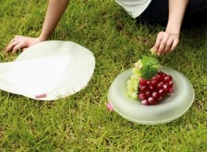 air-dish-1