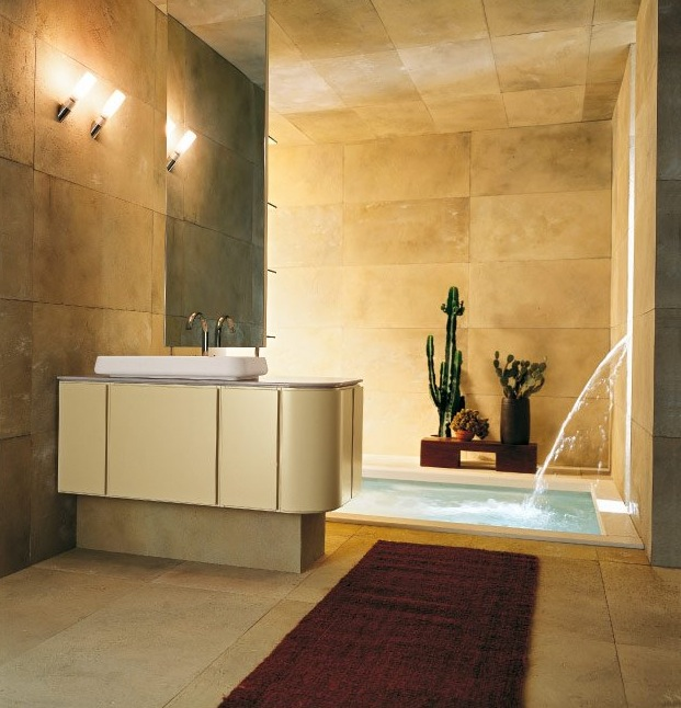 bathroom-cactus-plant