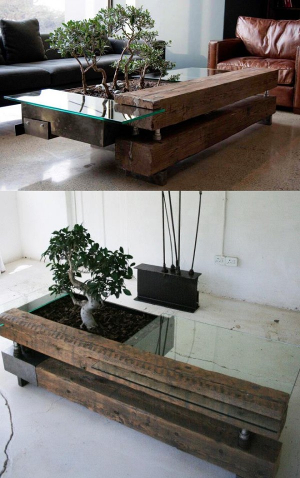 bonsai-coffee-table-600x9561