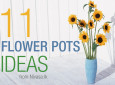 11_flower_featured