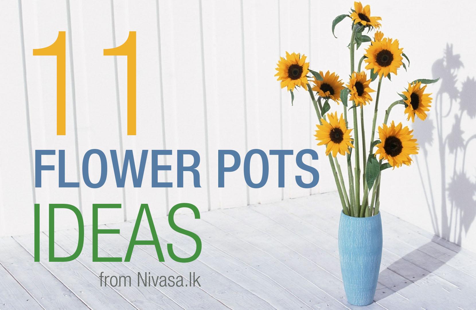 Flower Pots Ideas | PHOTOS INSIDE