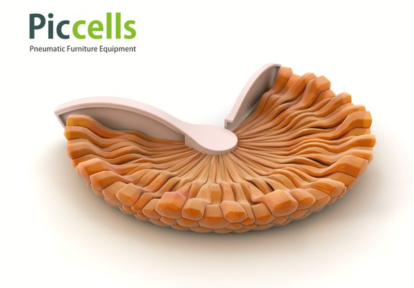 piccells_implementation