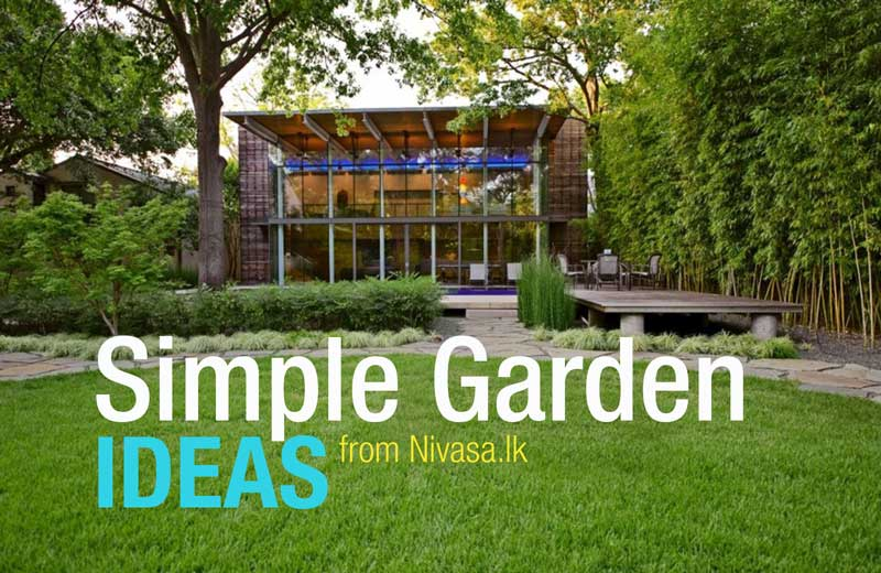 Simple yet beautiful garden ideas for your home